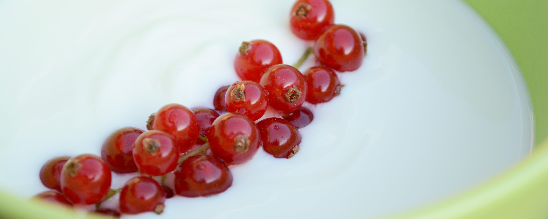 Den selbst gemachten Joghurt könnt ihr mit Obst oder Gewürzen wie Zimt verfeinern.