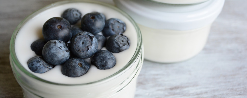 Reisgurt: Veganer Joghurt auf Reisbasis lesen