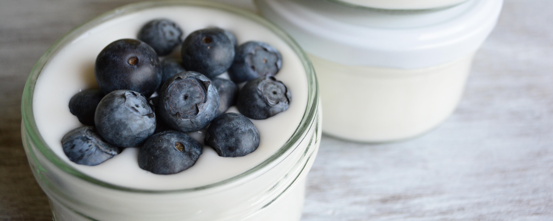 Der vegane Joghurt auf Reisbasis. Hier sehr ihr ein Testprodukt.