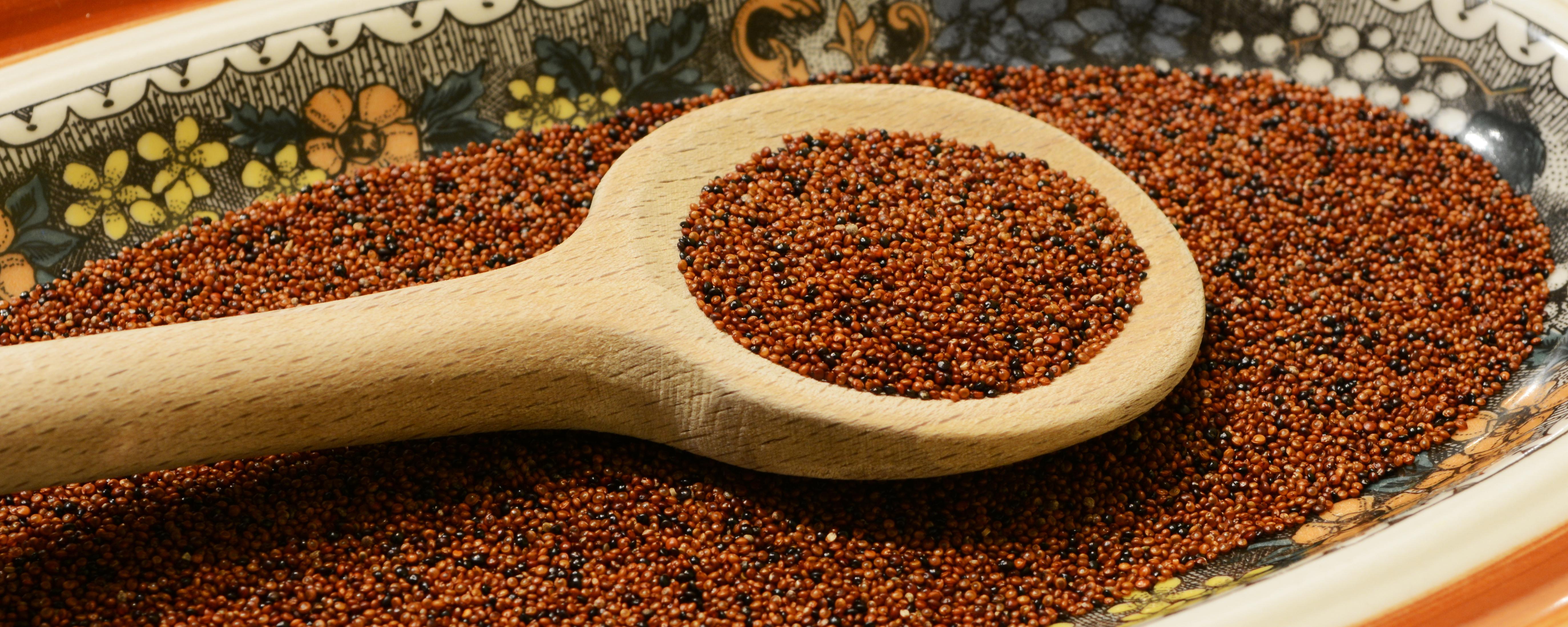 Canihua ist ein kleines braunes Körnchen - mit besten Inhaltsstoffen.