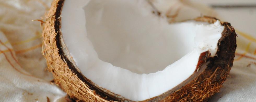 Kokosöl wird aus dem Fruchtfleisch von Kokosnüssen gewonnen