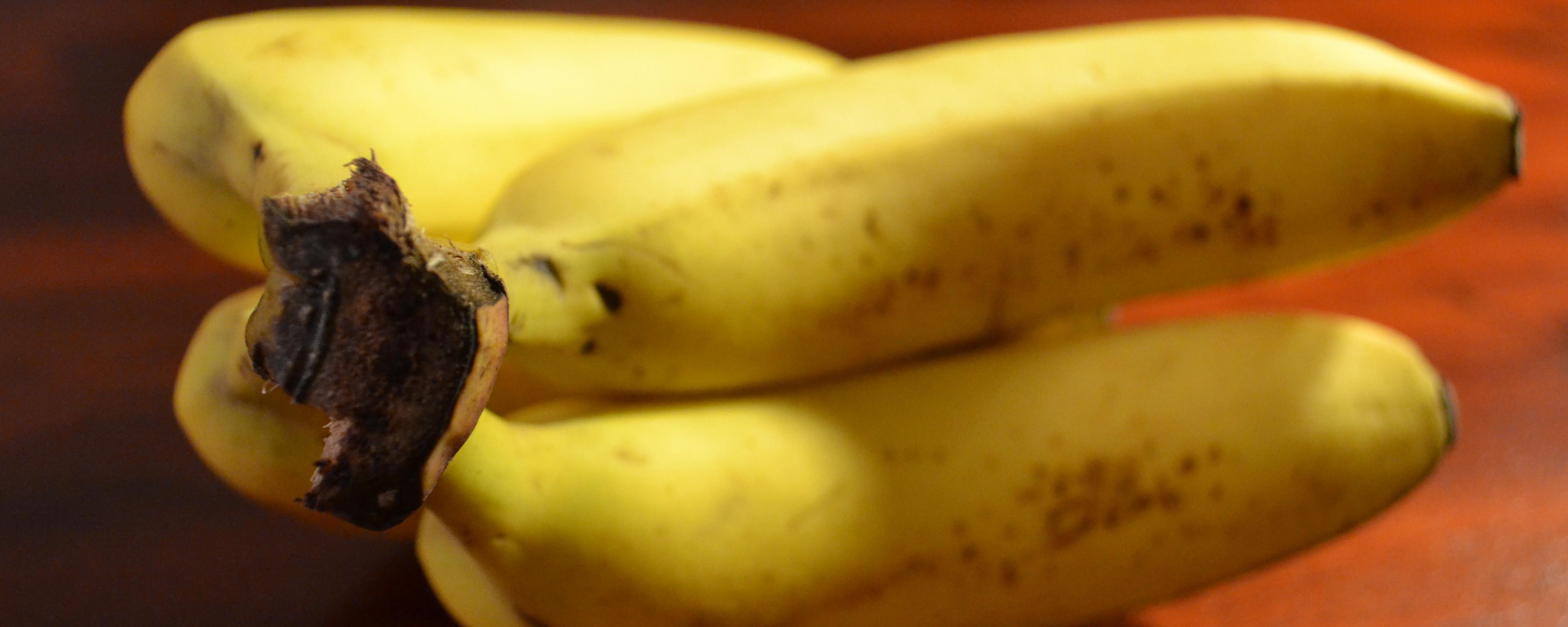 Bananen sind lecker und gesund. Sie enthalten viele Kohlenhydrate.