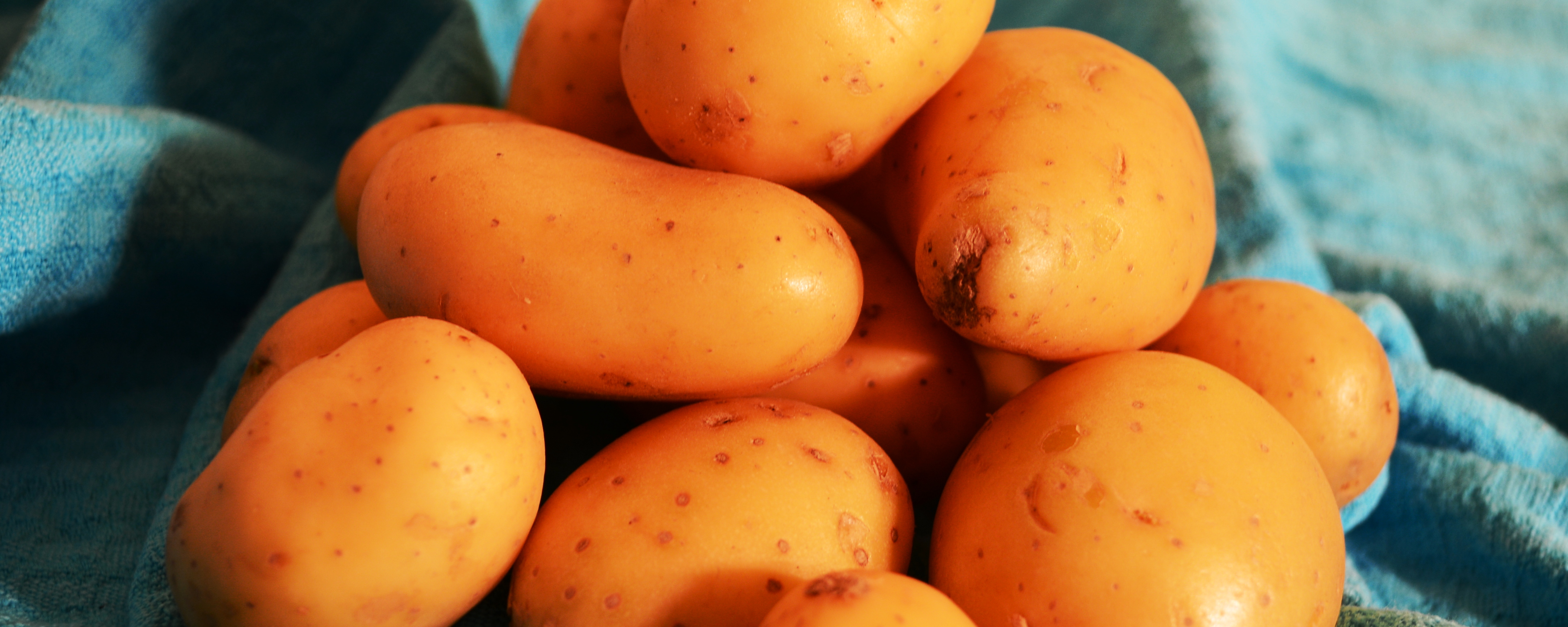 Der Klassiker unter den gemüsigen Kohlenhydraten: die Kartoffel.
